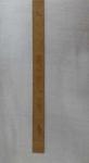 gandhi scale-120